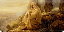 Jesus, Light of the World Jesus Christ Art Checkbook Cover