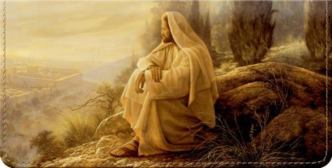 Jesus Maravilhoso Grande Checkbook cover