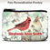 Lena Liu's Morning Serenade Coin Purse