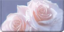 Rose Petal Blessings Checkbook Cover