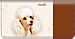 Poodle Checkbook Cover