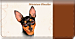 Miniature Pinscher Checkbook Cover