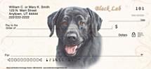 Black Labrador Personal Checks
