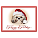 Faithful Friends - Shih Tzu Personalized Holiday Cards