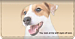Faithful Friends - Jack Russell Checkbook Cover