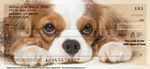 Faithful Friends - Cavalier King Charles Personal Checks