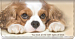 Faithful Friends - Cavalier King Charles Checkbook Cover