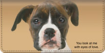 Faithful Friends - Boxer Checkbook Cover