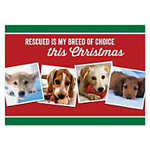 Support Canine Companions When Sending This Paw-fect Seasons Greeting
