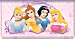 Disney Princess Dreams Checkbook Cover