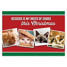 Support Animal Friends While Sending The Purr-fect Season's Greeting
