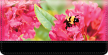 Bumble Bee Buzz Checkbook Cover