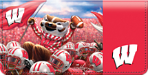 Badger Spirit Checkbook Cover