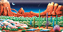 Desert Nights Checkbook Cover
