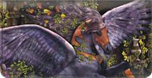 Equine Fantasy Checkbook Cover
