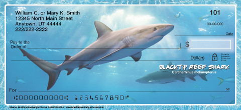 Sharks Personal Checks