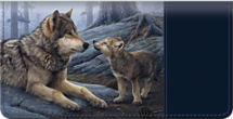 Maternal Wolves Checkbook Cover