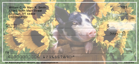 Pigs Personal Checks