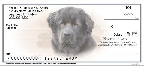 Best Dog Breeds Newfoundland Checks