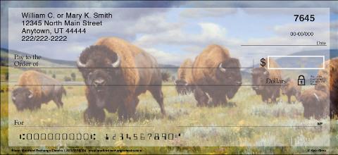 Bison Personal Checks