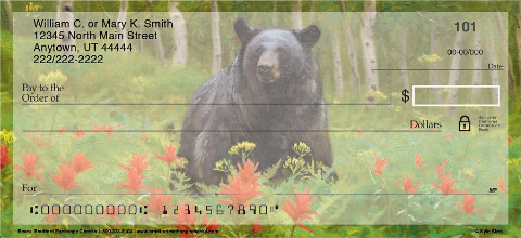 Bears Personal Checks