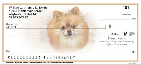Best Dog Breeds Pomeranian Checks