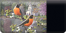 Beautiful Songbirds Celebrate Your Faith