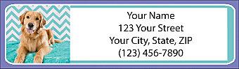 Chevron Golden Retriever Address Labels