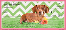 Go Weiner Dog Wild with Checks in Honor of Your Precious Pup
