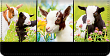 Experience Extreme Cuteness Every Day with a Goat Themed Checkbook Cover