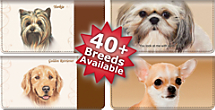 Choose From Over 40 Dog Breeds