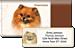 Pomeranian Bonus Buy