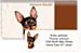 Miniature Pinscher Bonus Buy