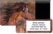 Equus Bonus Buy
